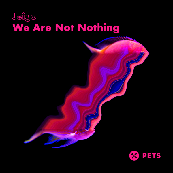 We Are Not Nothing