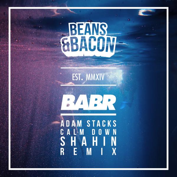 Adam Stacks, Shahin - Calm Down (Shahin Remix)