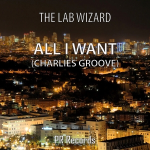 PRREC085A : The Lab Wizard - All I Want (Charlies Groove)