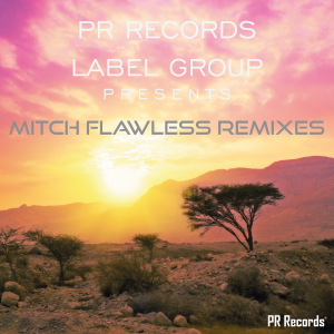 PRREC273A : Various Artists - PR Records Label Group Presents Mitch Flawless remixes