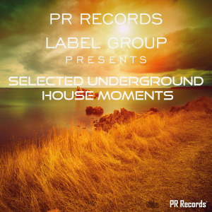 PRREC274A : Various Artists - PR Records Label Group Presents selected underground house moments