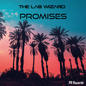 PRREC393A : The Lab Wizard - Promises