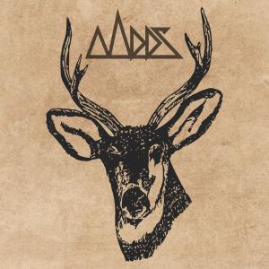 PRREC419A : Mees - Wild