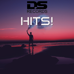 DS012 : Various Artists - DS Records hits!