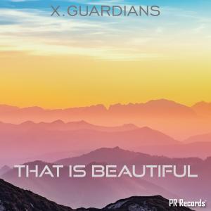 PRREC447A : X.Guardians - That is beautiful