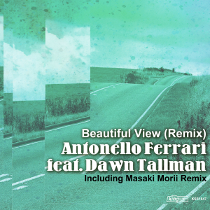 Beautiful View (Remix)